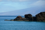 Maui-2009253-1024x682.jpg