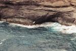 Kauai118.jpg