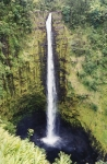 BigIsland175.jpg
